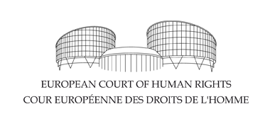 european court of human rights essay Sample essay on european court of human rights 1 sample essay on european court of human rights european court of human rights refers to an international or a supra- national court that was established by a european convention on human rights.